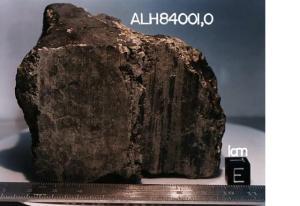 El fósil que contuvo la vida. El meteorito de Marte.