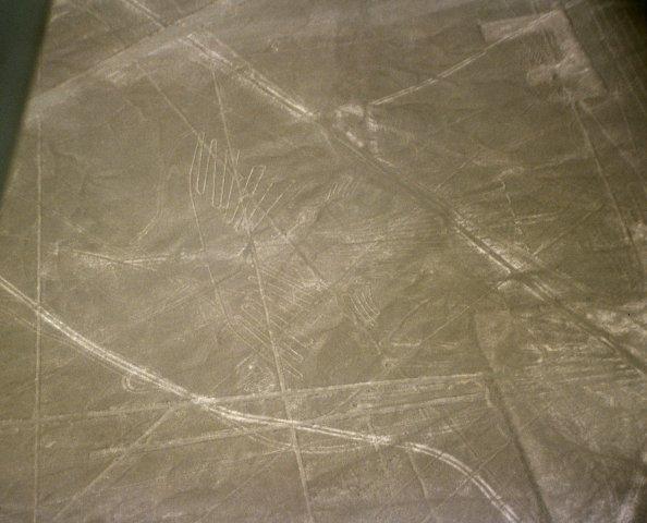 Nazca-lineas-condor-c01