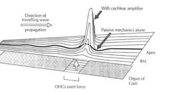 oscilators