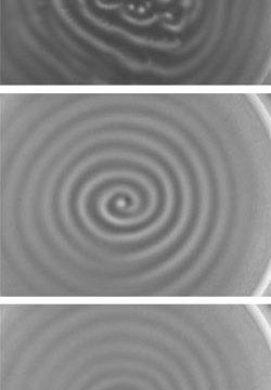 plasma_patterns_250
