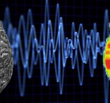 Brain waves comp