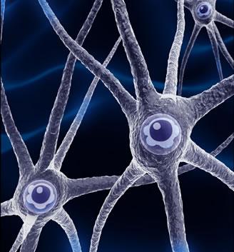 """Los pensamientos negativos y la denominada""""peste"""" de las neuronas:Reflexiones sobre la cuestión. Neuronas"""